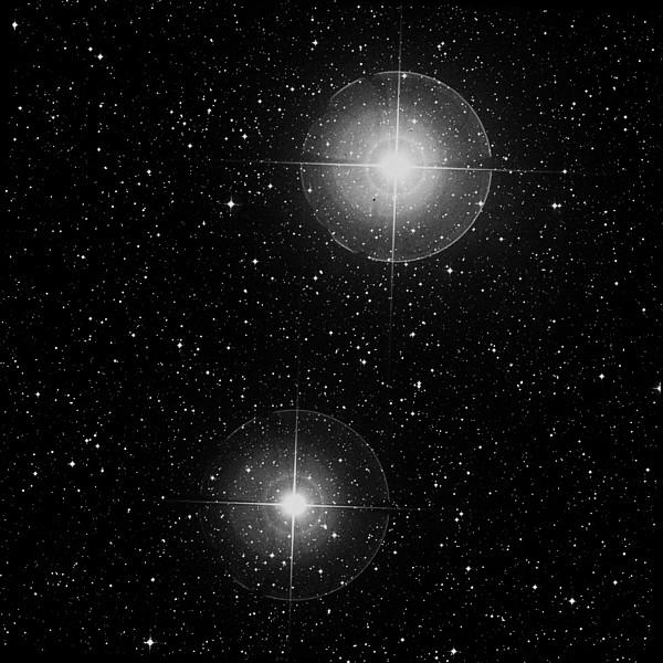 Созвездие Стрельца | статья. Автор Андрей Климковский
