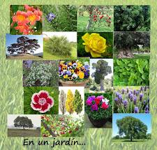 ¡¡Un jardín!!