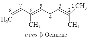 trans- β-Ocimene