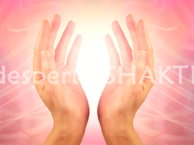 terapia-de-reiki-profunda-chakra-raiz