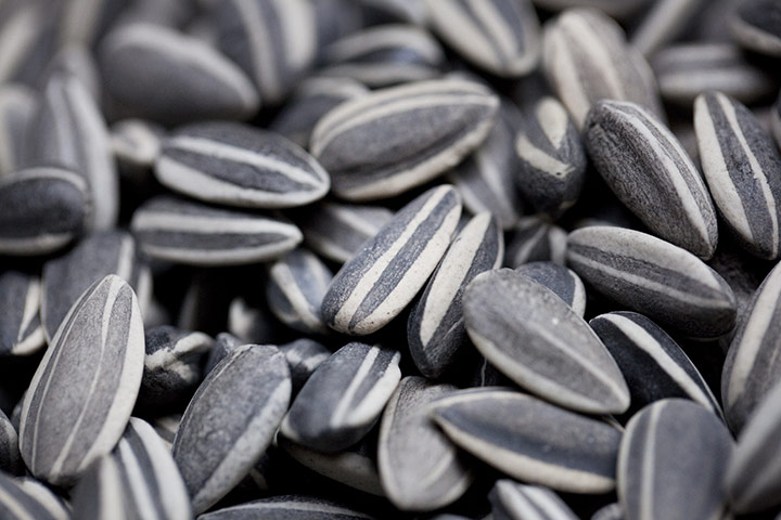 Pascale Petit's Blog: Ai Weiwei's Sunflower Seeds at Tate ... Ai Weiwei Sunflower Seeds