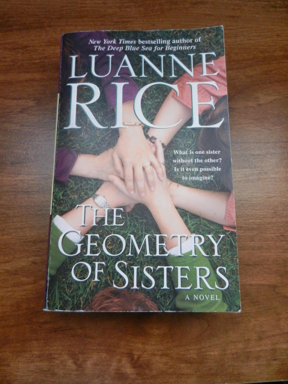geometry of sisters luanne rice book