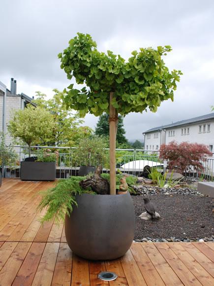 modern round planter pot modern planter and pots modern design rh moderndesign org Contemporary Exterior Planter Modern Outdoor Wall Planters
