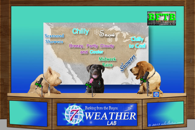 BFTB NETWoof Weather forecast map