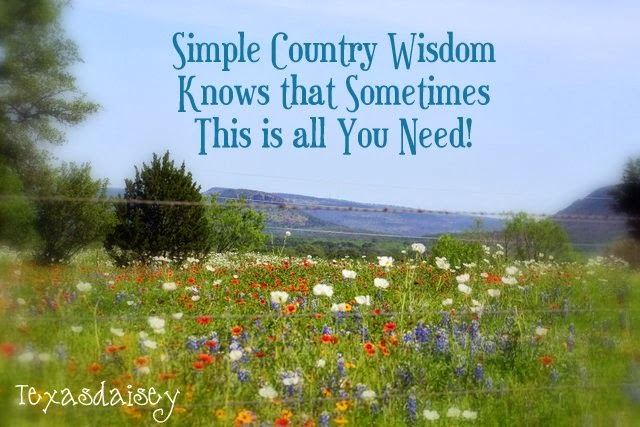 25 funny lessons of simple country wisdom quotes or sayings...life lessons learned the hard way.