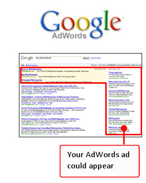 Adwords Marketing