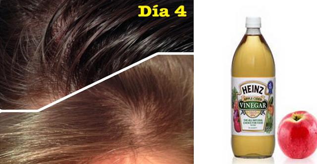 El rating de la cosmética de la máscara para los cabellos