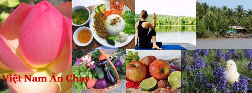 Việt Nam Ăn Chay