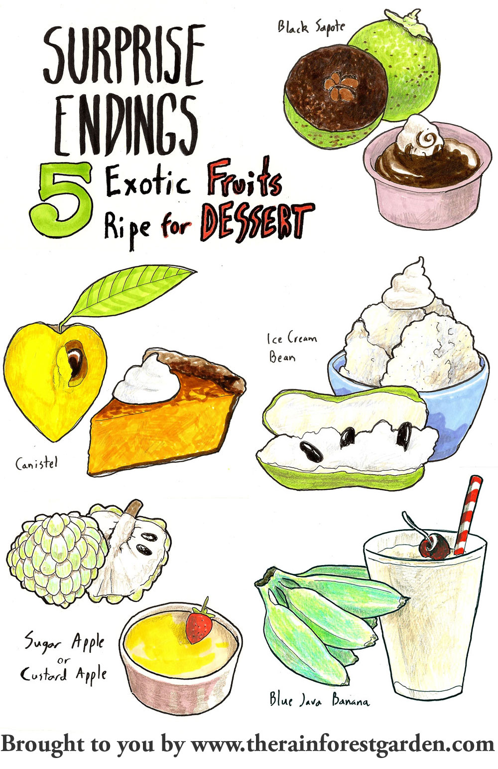 Exotic Fruits List Buy...
