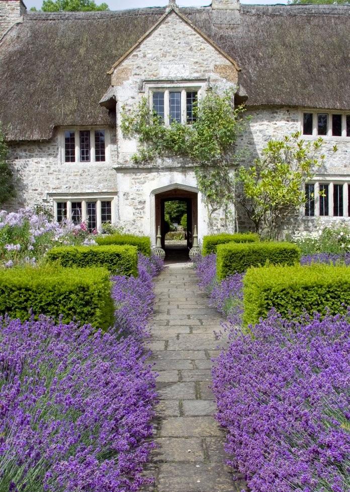 Garden design with lavender home design for Garden design ideas lavender