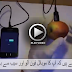 Potato and Apple Can Charge Your Cell Phone – Must Watch
