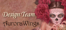 AURORA WINGS DESIGN TEAM