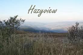 Hazyview - letterlijk heiig uitzicht - is een kleine plattelandsgemeenschap in Mpumalanga en staat bekend vanwege zijn bananenplantages