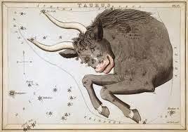 Horoscop februarie 2015 - Taur