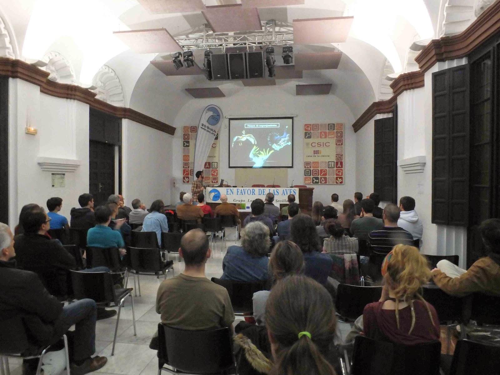 """Conferencia """"La complicada vida sexual de las aves: ejemplos de un estudio a largo plazo""""., por Javier Manzano Baraza, en el ciclo Martes Ornitológicos que el Grupo Local SEO-Sevilla organiza en el museo Casa de la Ciencia de Sevilla."""