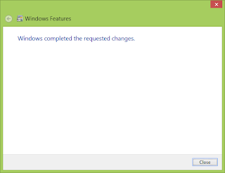 IIS Windows 8
