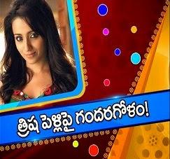 Trisha Krishnan breaks her engagement with Varun Manian
