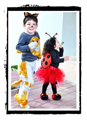 ladybug and cat costumes