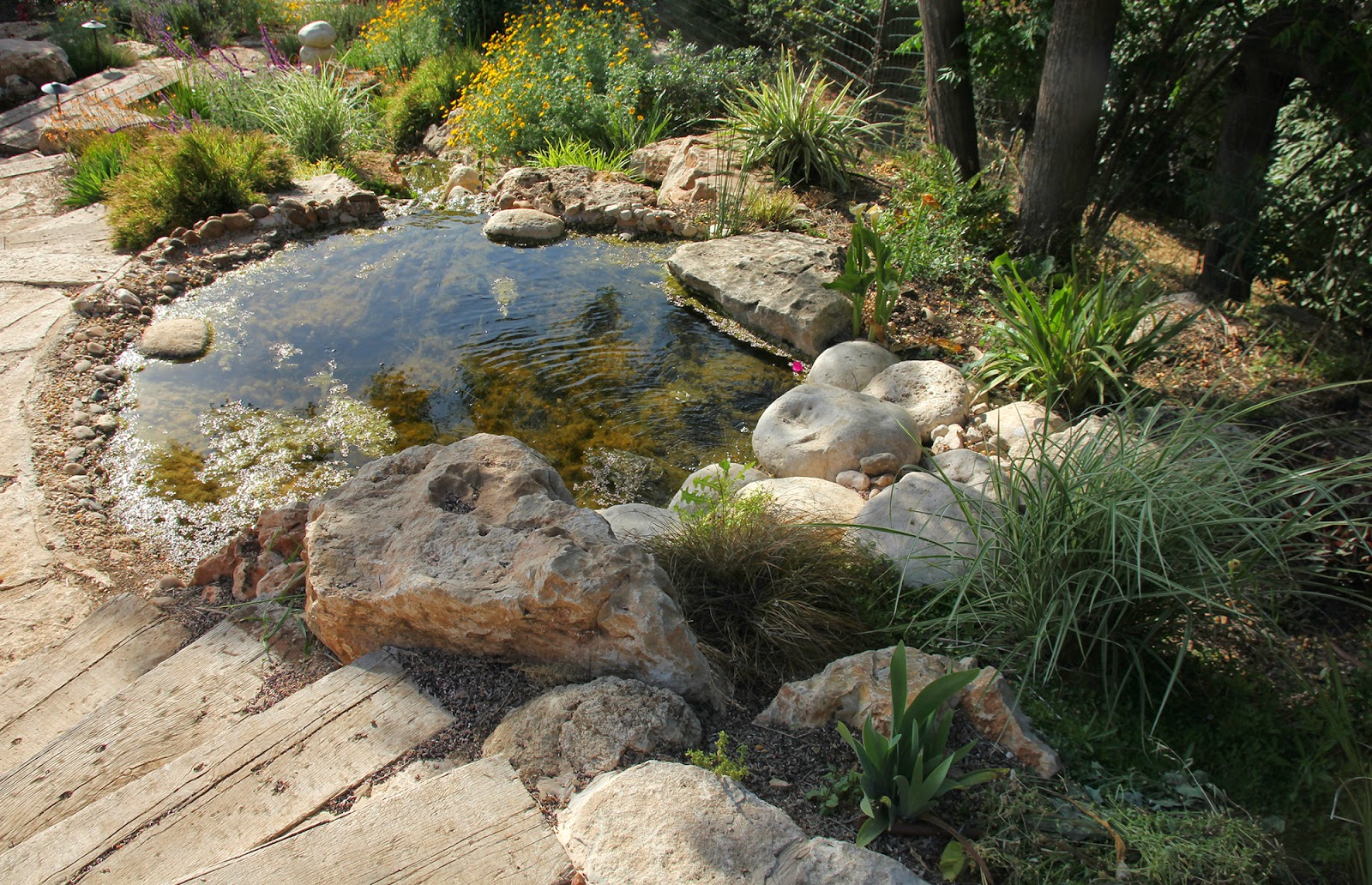 Axel ewald recent projects discoveries reflections for Garden pond gravel
