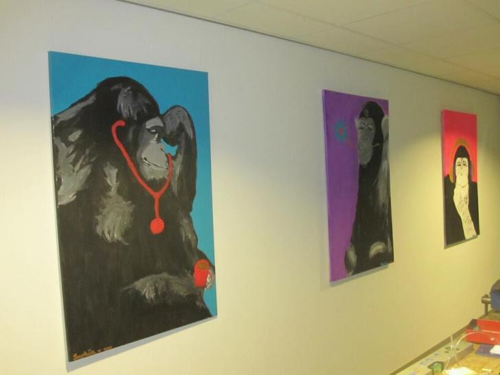 Mijn apen in het AMC