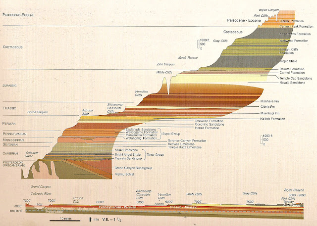The gallery for --> Sedimentary Rock Formation Diagram