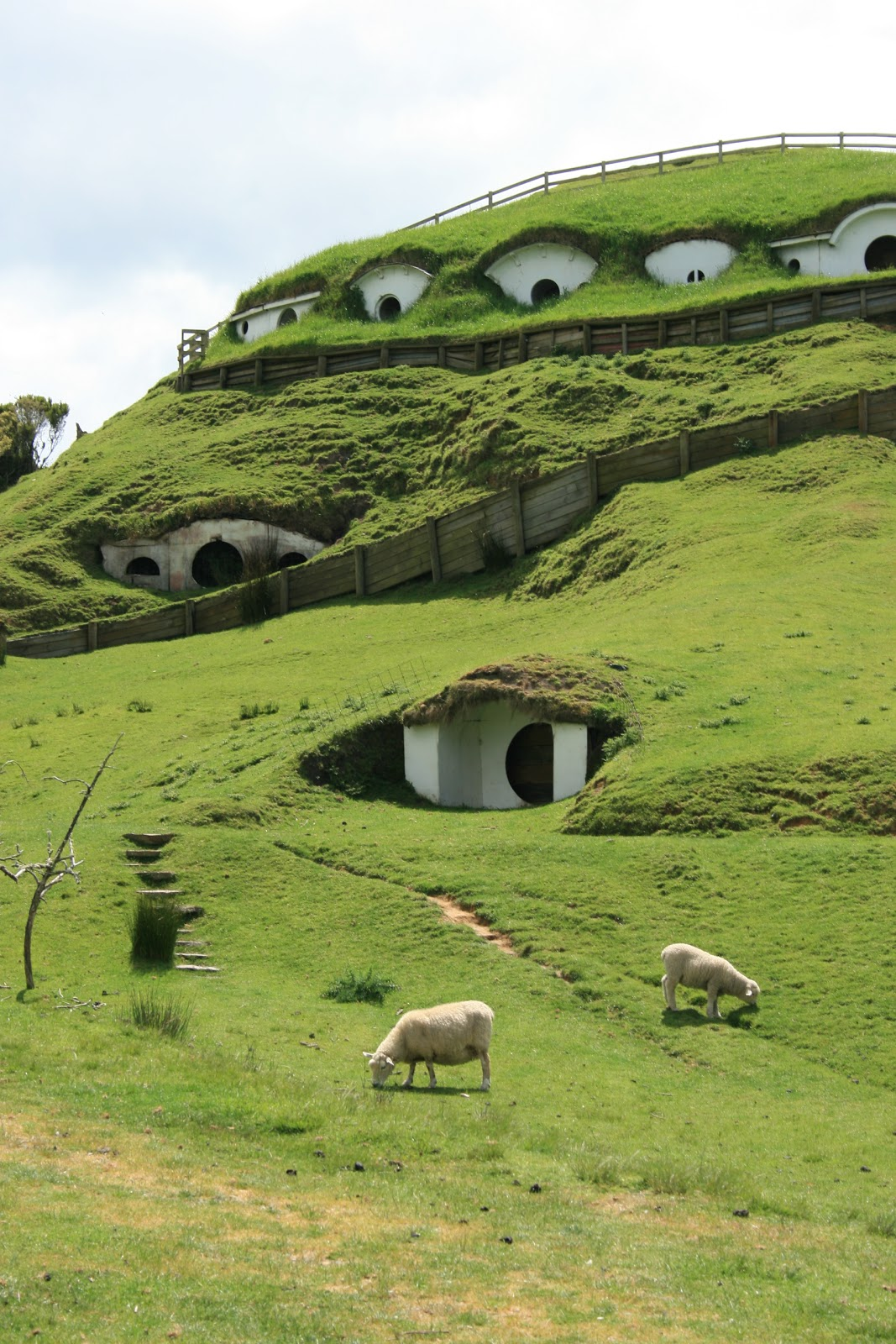 Hobbit Houses in Matamata, New Zealand.