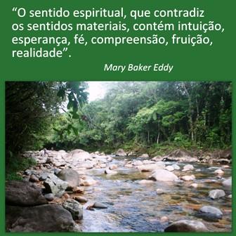 ♦ LEMA DO ACAMPAMENTO: