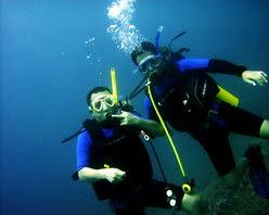 Wisata domestik - Diving