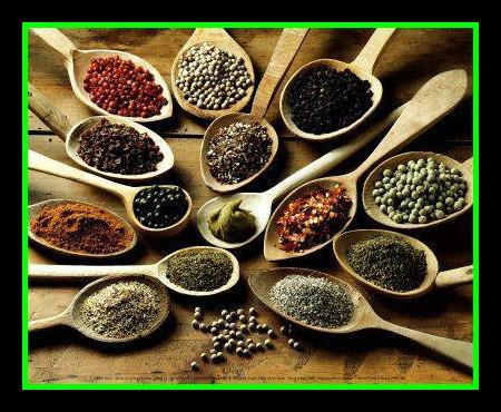 Las tentaciones de los santos los condimentos las for Cultivo de plantas aromaticas y especias