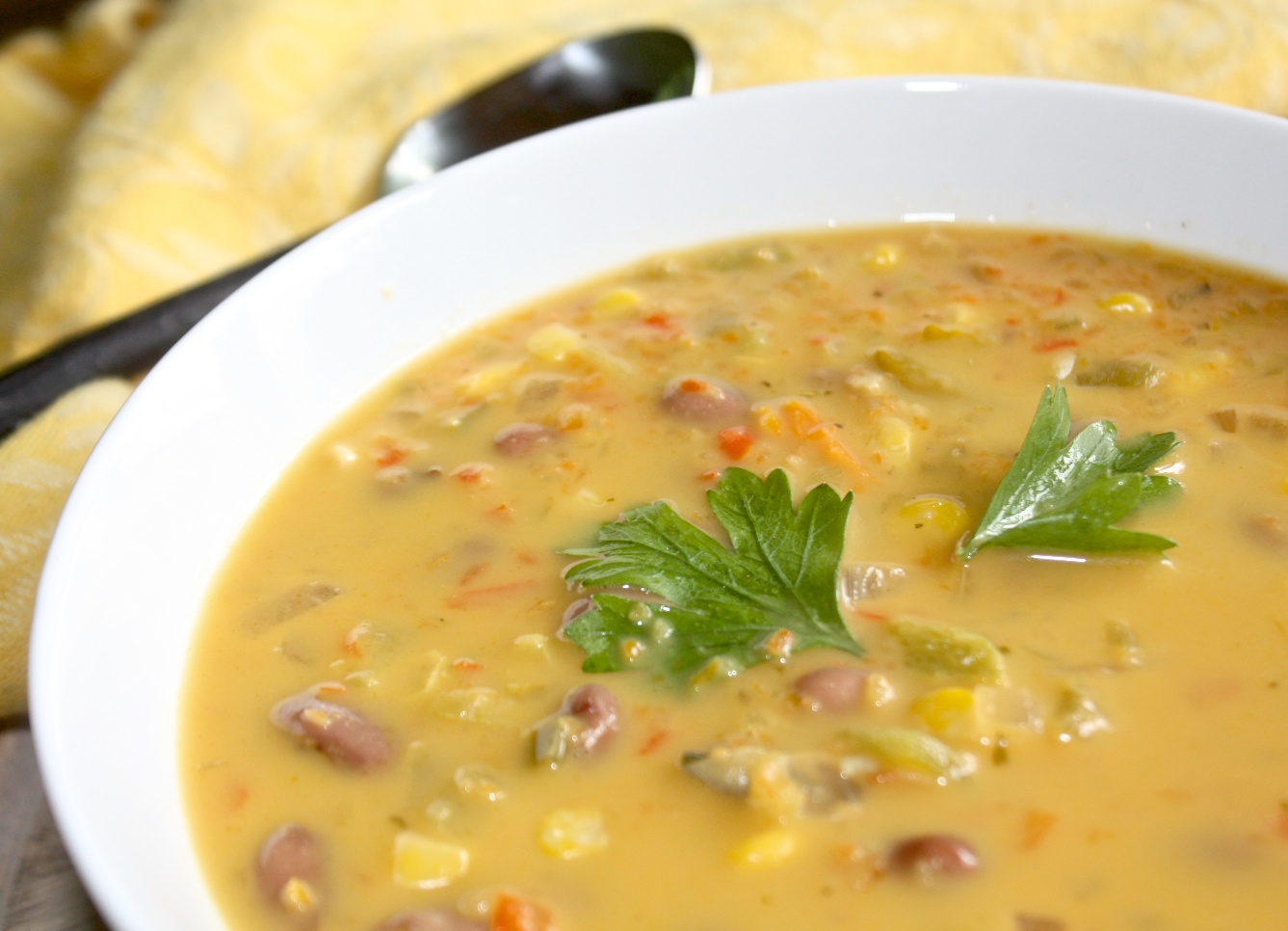 Helyn's Plant-Based Kitchen » Fiesta Bean Soup