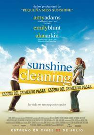descargar Sunshine Cleaning en Español Latino