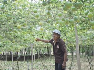 http://bilalelakiberbicara.blogspot.com/2013/02/aku-anak-felda.html