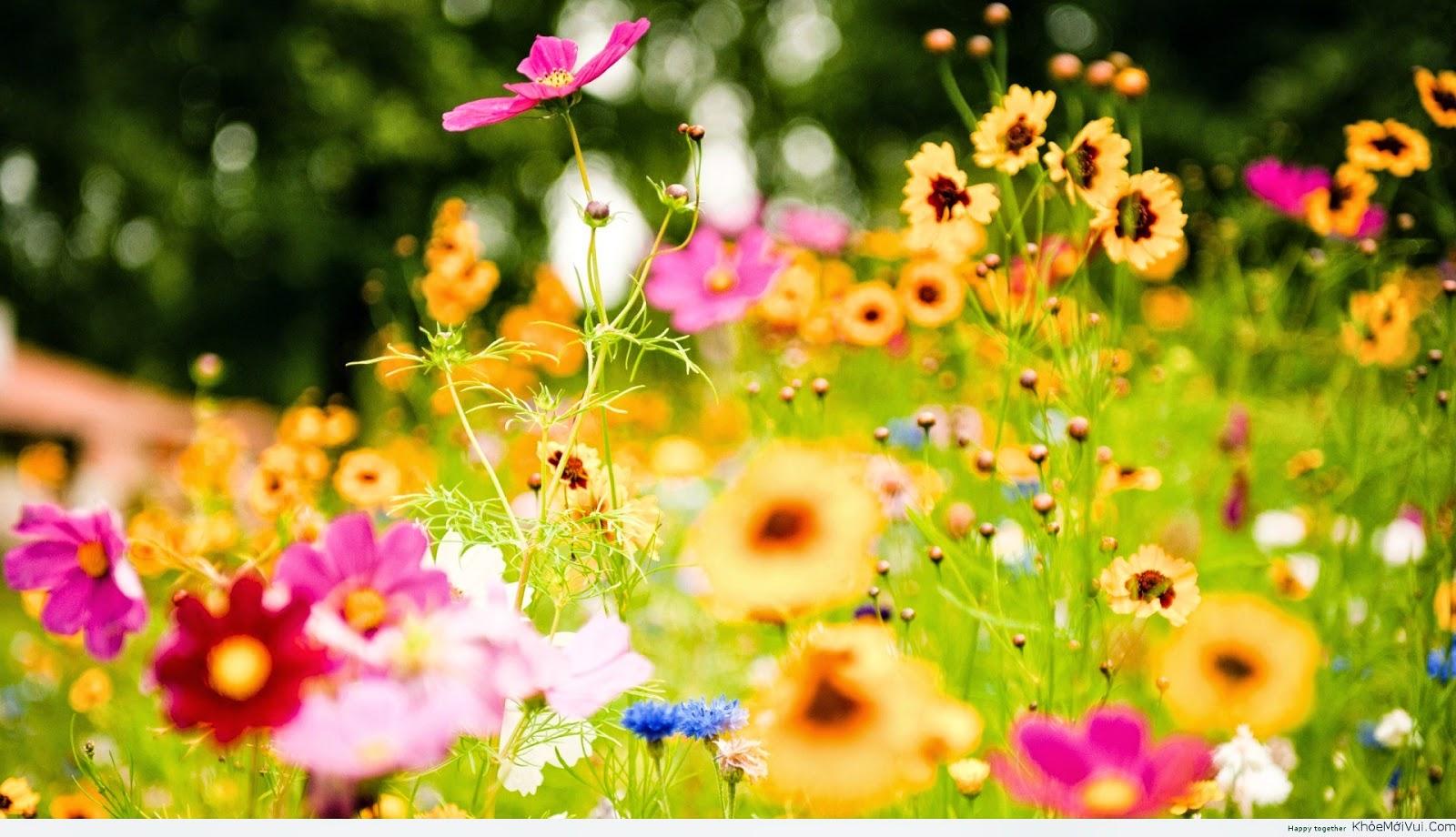 Thay đổi để cuộc sống của bạn trở nên tươi đẹp hơn