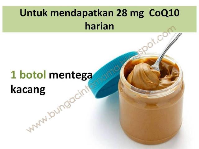 CoQ-Untuk-Kesihatan-Jantung