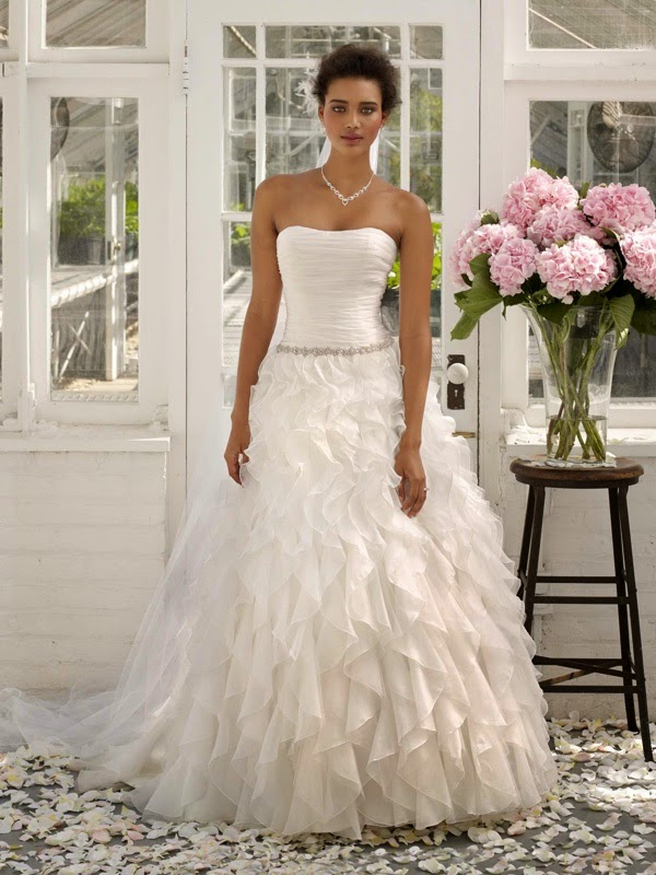 In need of a little wedding dress inspiration? Find the top wedding dress ideas, trends, tips & pictures of real brides in David's Bridal brides guide today!