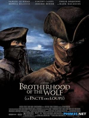 Anh Em Nhà Sói Trọn Bộ ... -  Brotherhood Of The ...