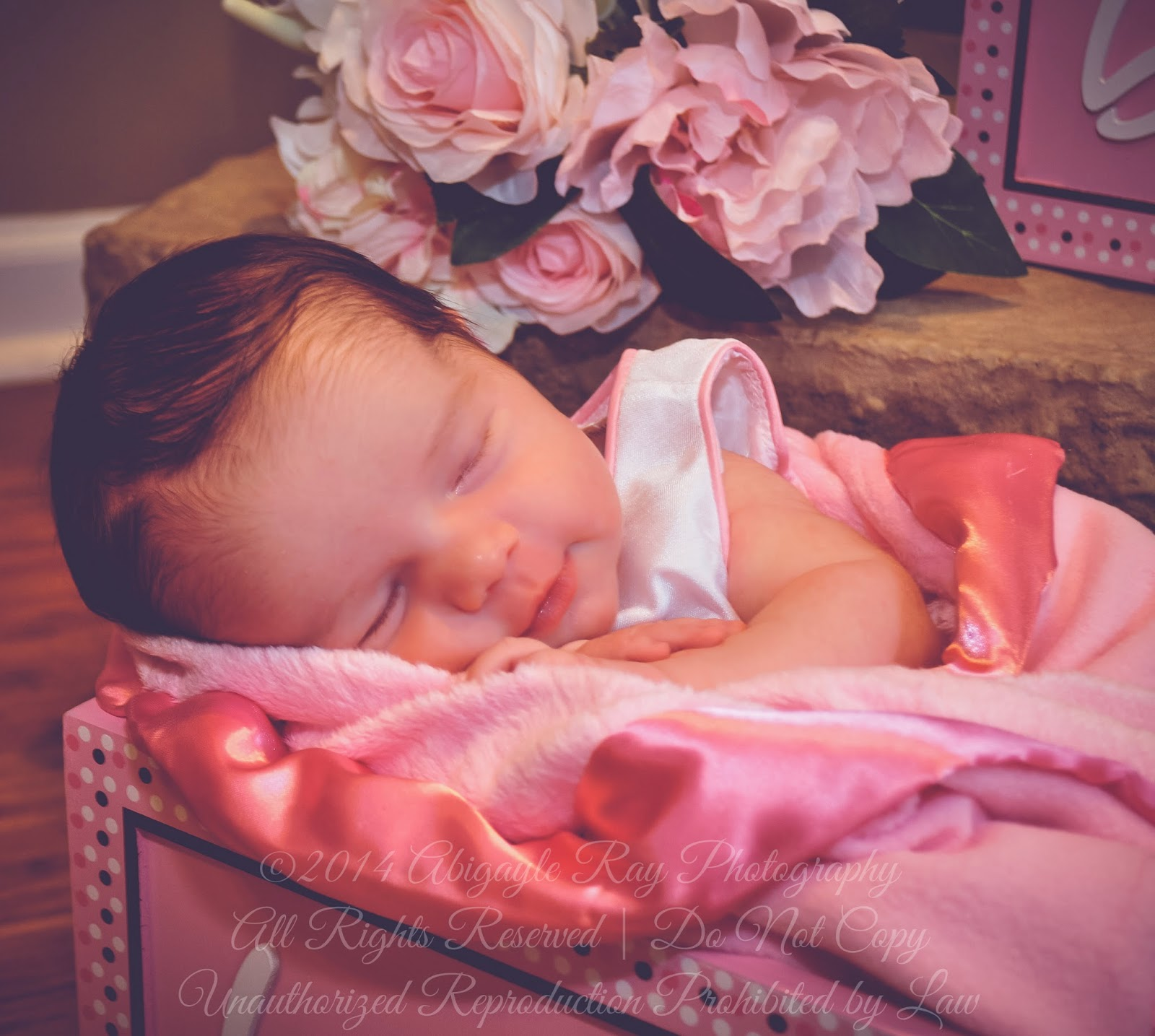 Newborn Photography Elmira, Newborn Photography Horseheads, Newborn Photography Corning, Newborn Photography Watkins Glen, Newborn Photography Waverly, Newborn Photography Sayre, Newborn Photography Athens, Newborn Photography Towanda, Newborn Photography Troy, Newborn Photography Canton, Newborn Photography Mansfield