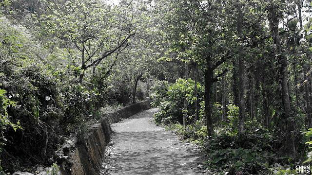 一個人旅行: 南化烏山風景區