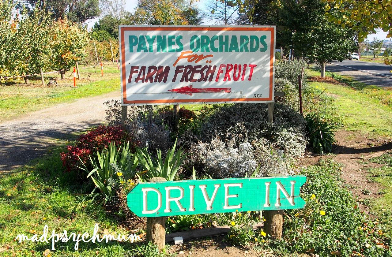 Kết quả hình ảnh cho Paynes Orchards