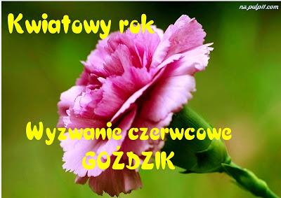 Kwiatowy rok- czerwiec