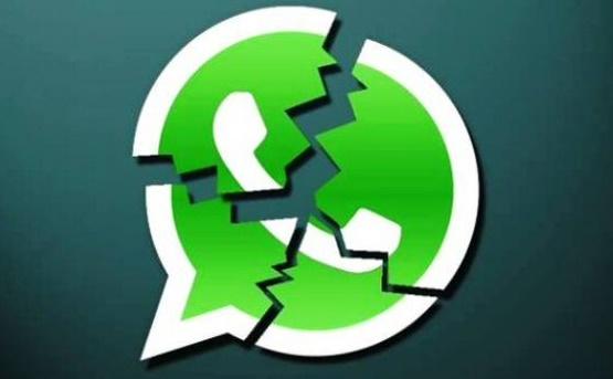 whatsapp caido crash