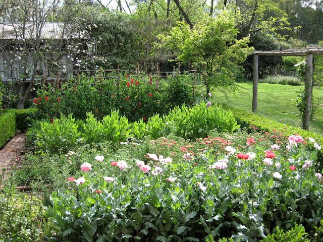 En el jardin la evoluci n del jard n hippie for Tipos de arbustos ornamentales