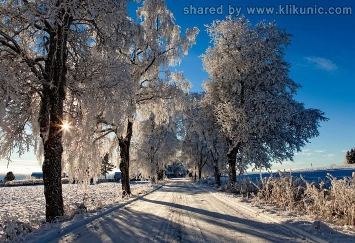 http://2.bp.blogspot.com/-KY3jIglE4HA/TXltmaBJinI/AAAAAAAAQ0g/ShCac2hIdVE/s1600/winter_48.jpg