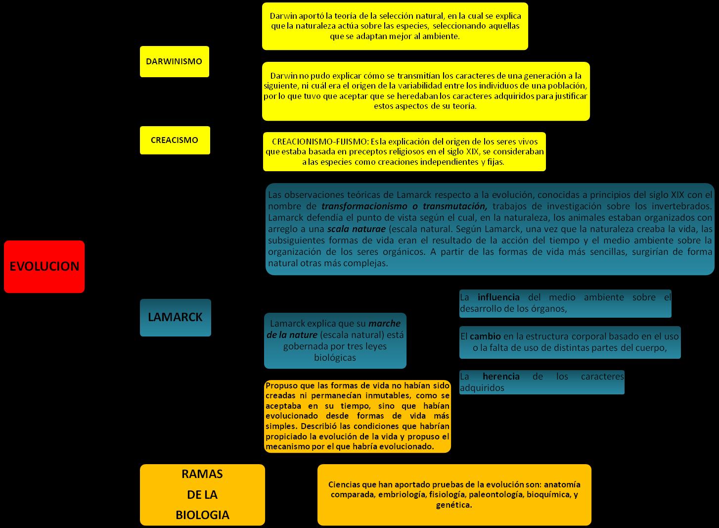 Atractivo Anatomía Comparada Y Evolución Bandera - Anatomía de Las ...