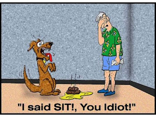 I said SIT you idiot!