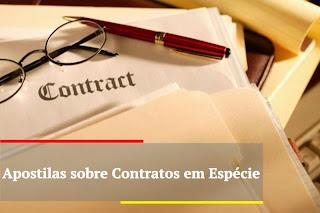 resumo contrato em espécie compra e venda
