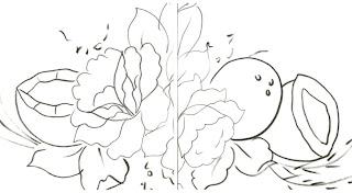 cocos e rosas