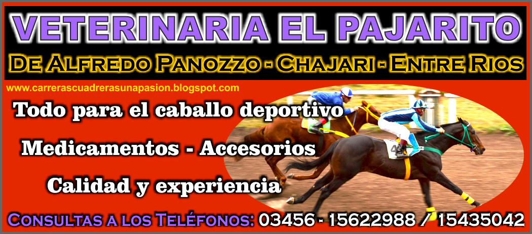 VETERINARIA EL PAJARITO - 13.06.2015