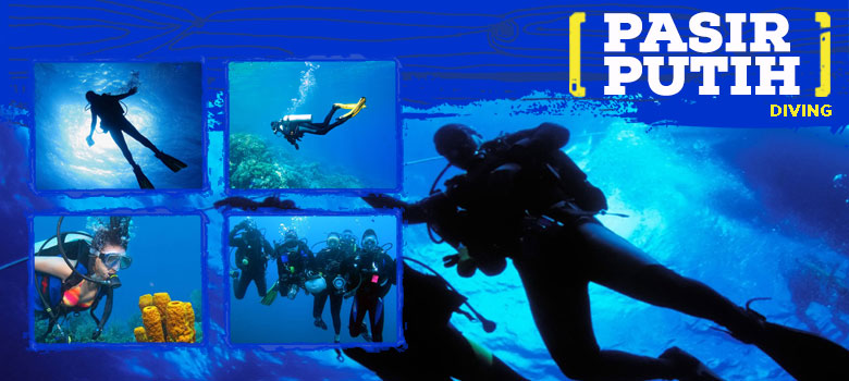 scuba diving di pangandaran
