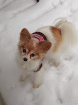 Our cutie...